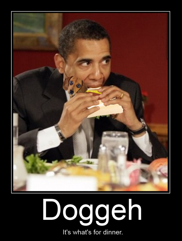 obama dog sandwich