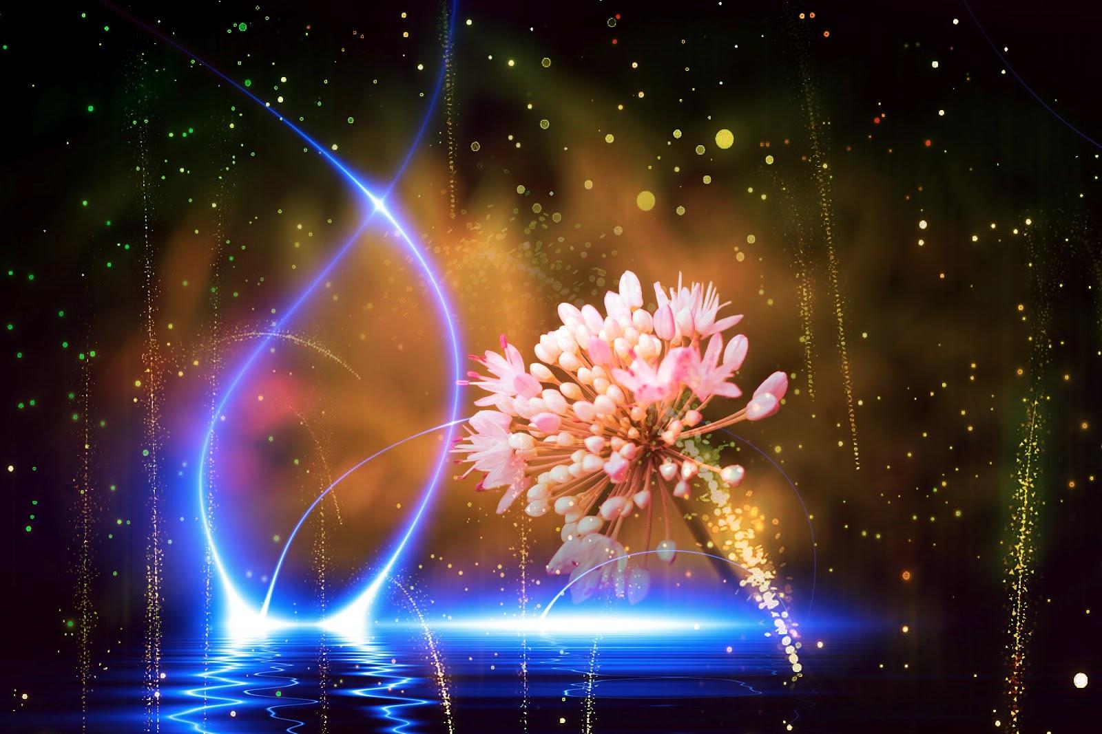 ===La magia se siente, se vive...=== Pic1