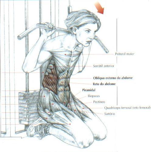 [Imagem: abdominal-com-polia-alta.jpg]