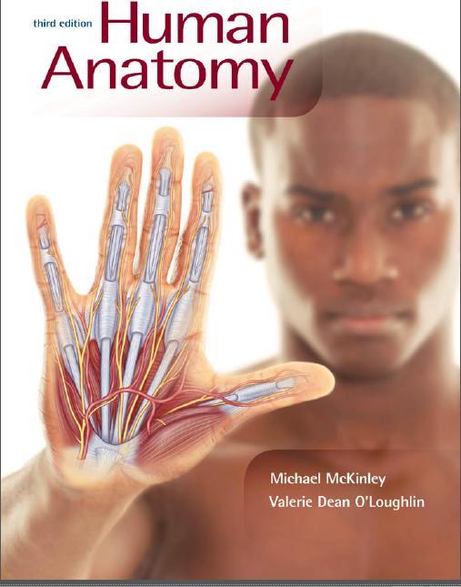 Human Anatomy 3rd Michael Mckinley Ebook Kedokteran