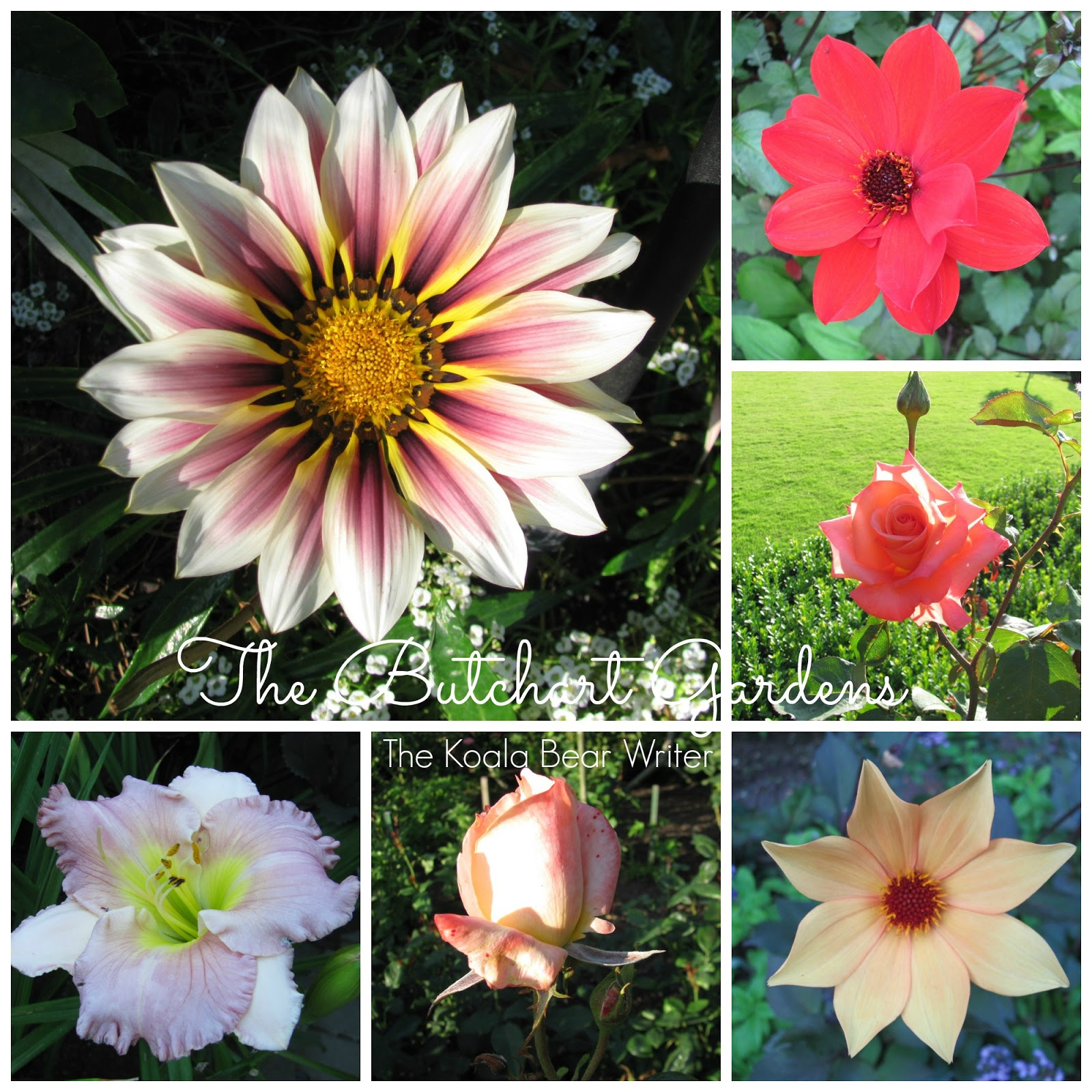 Explore: Butchart Gardens