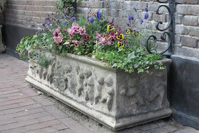 container garden, flowers, Haafner, Haarlem, pansies