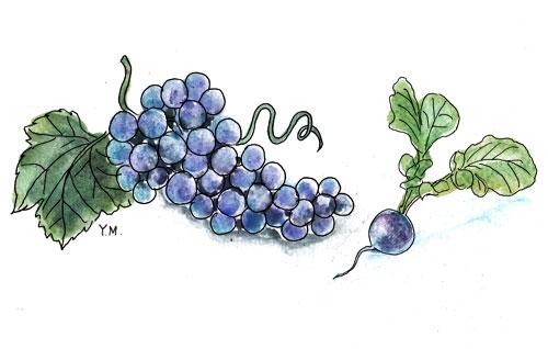 Grape and Radish by Yukié Matsushita