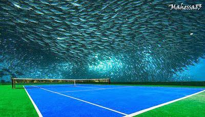 Mengenal Lapangan Tenis Di Bawah Laut Dubai