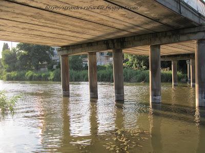 мост, ловля с моста