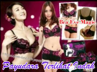 http://eve-bra.blogspot.com/
