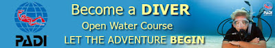 PADI Open Water Diver - Free Courses