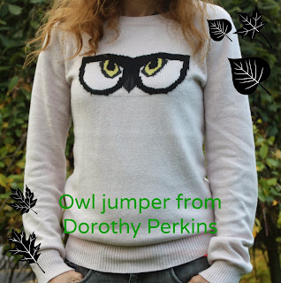Autumn-ladies-fashion-jumper-owl