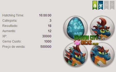 Dragão Surfe - Informações