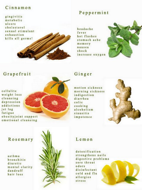 herbs that heal different health problems