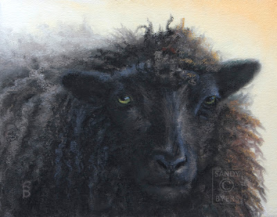 Moe, a pastel painting by Sandy Byers