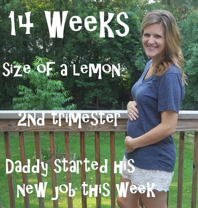 14 week baby bump
