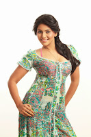 Anjali Hot Photo Shoot Stills 6