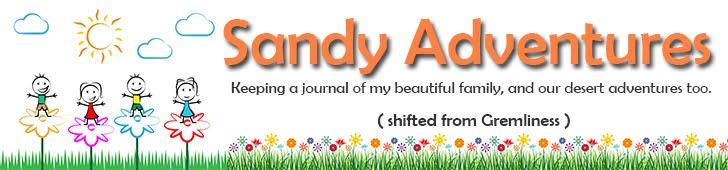 Sandy Adventures