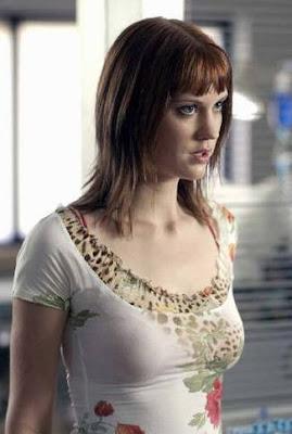 Lauren Lee Smith actor de television