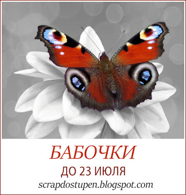 Бабочки до 23/07