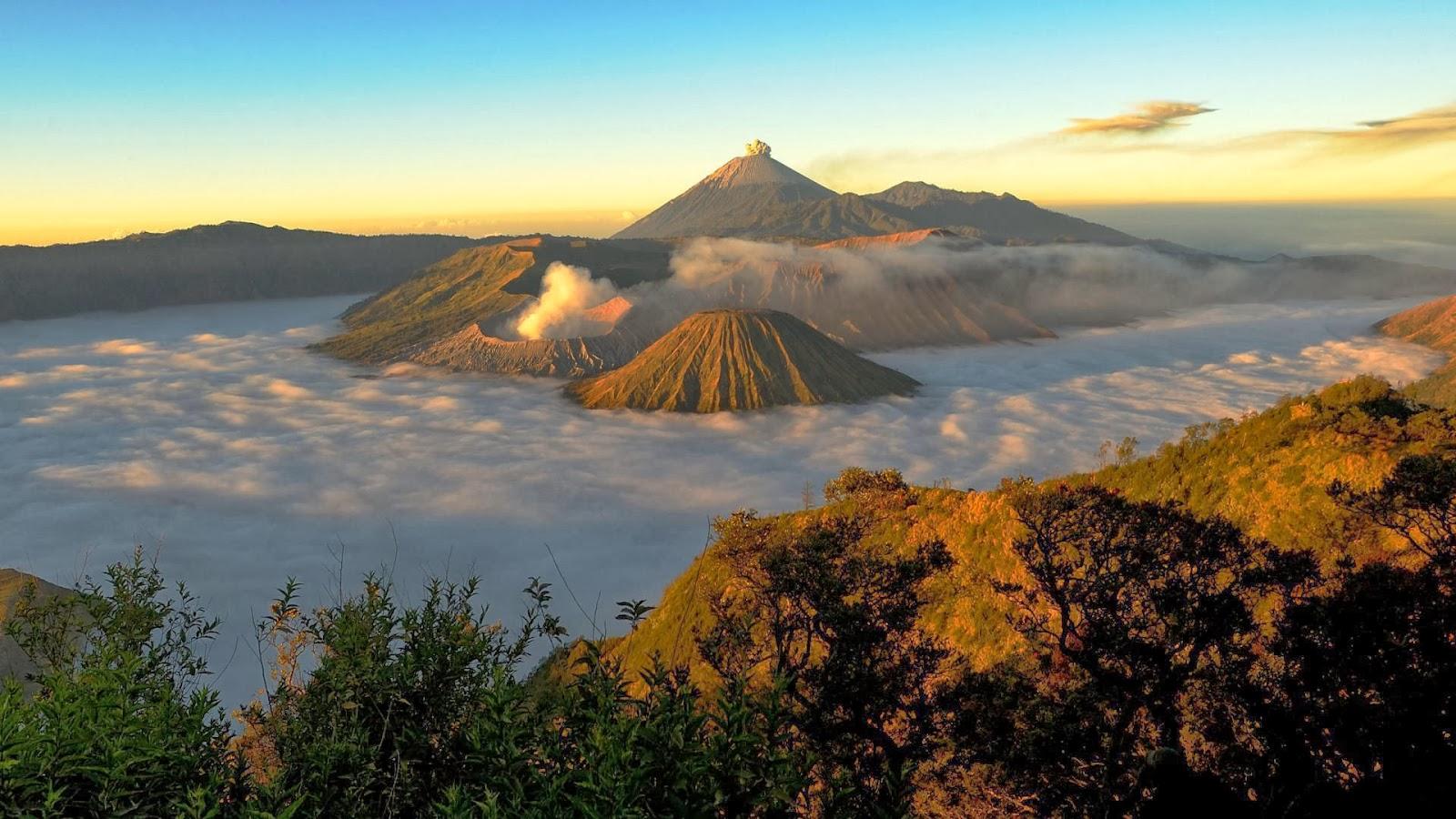 Wisata Gunung Bromo - Paket Wisata Gunung Bromo dan Kawah Ijen