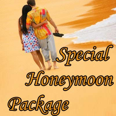 Special Honeymoon Packages