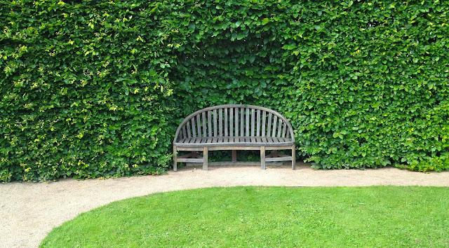 Il mondo in un giardino sempreverdi per siepi for Aiuole sempreverdi
