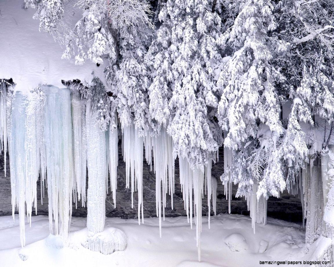 Winter Wonderland Scenes Wallpaper   WallpaperSafari