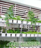 model rak tanaman sayur di rumah