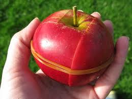 apel makan siang