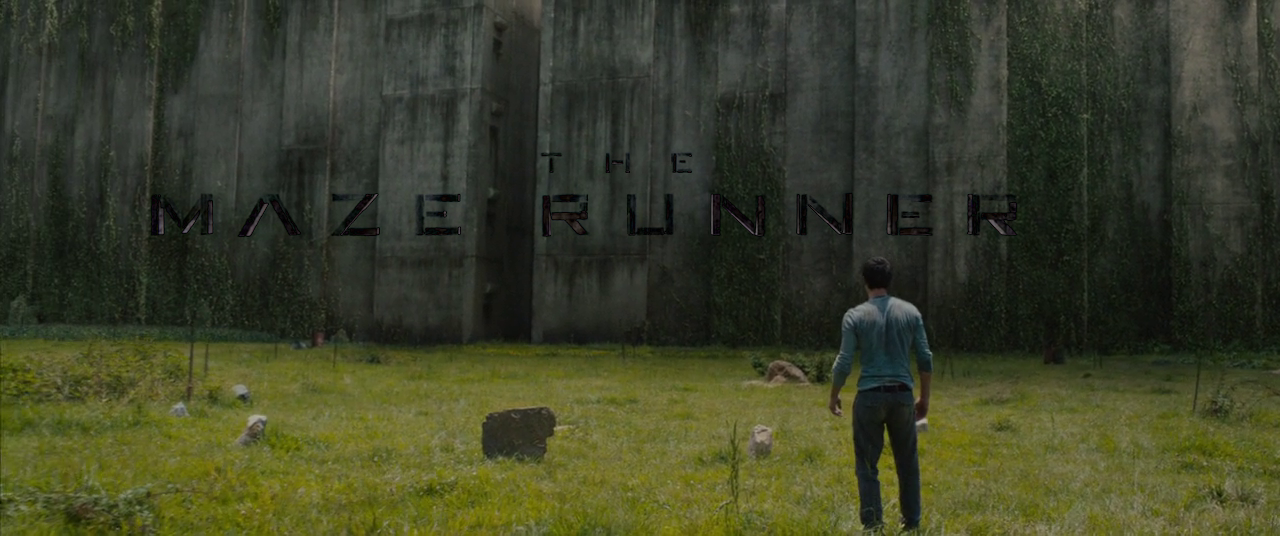 movie the maze runner was wicked blissful life