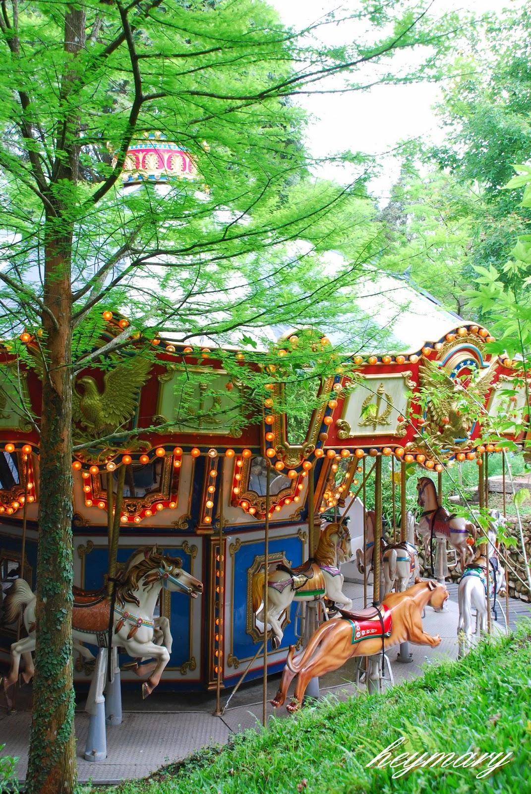 新社薰衣草森林|旅人的夢中森林