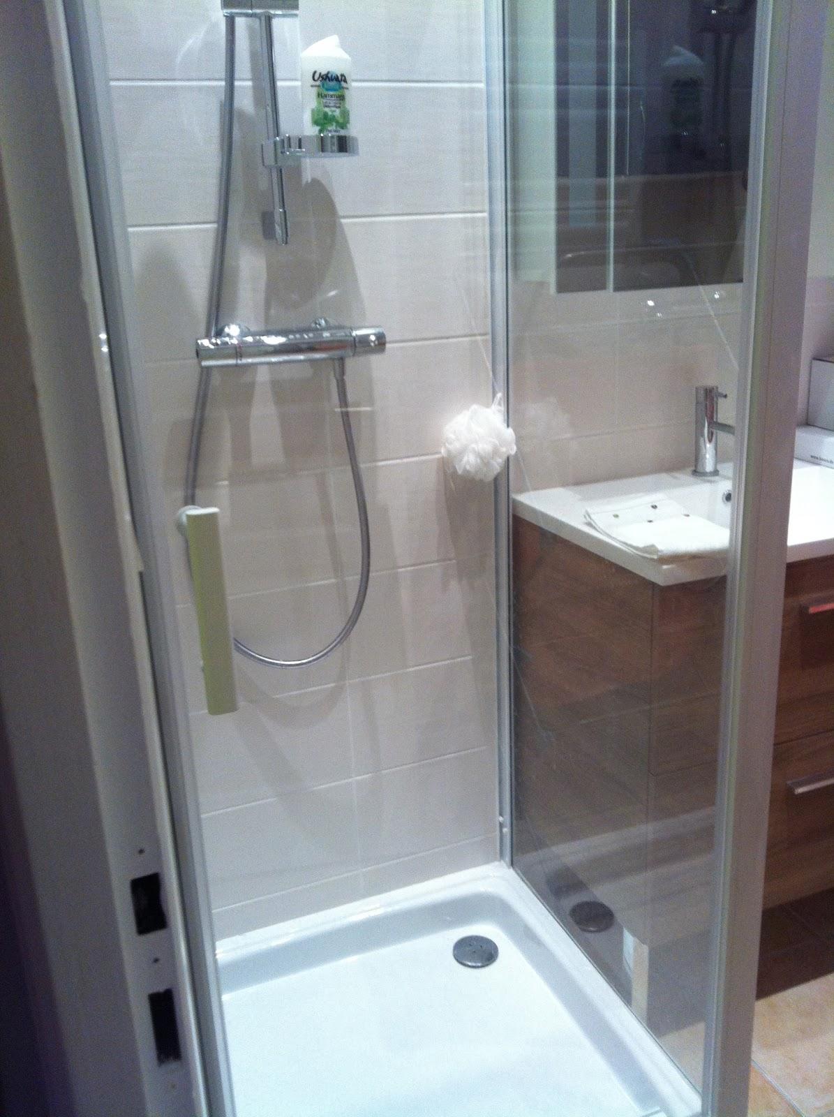 l 39 atelier des f es creation d 39 une salle de bain dans un cellier espace confin ambiance zen. Black Bedroom Furniture Sets. Home Design Ideas