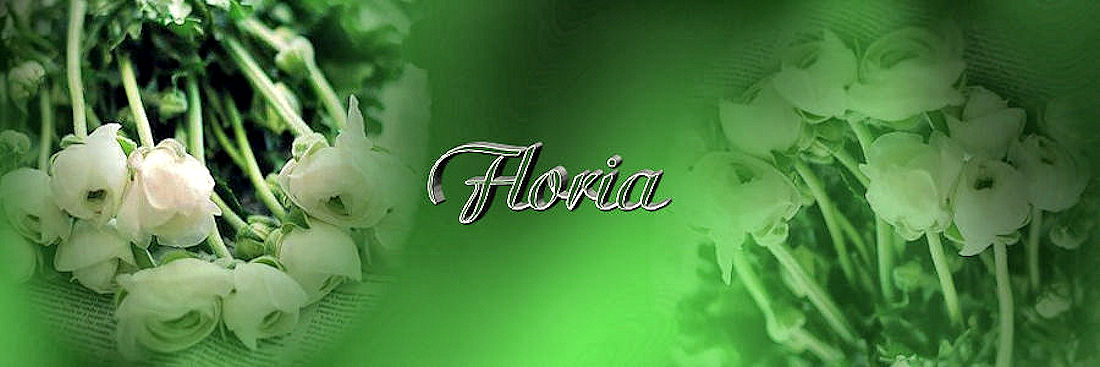 Tutorial Cre@nnie ~Floria