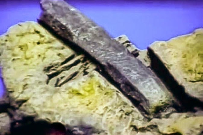 Was This Hammer Made 100 Million Years Ago?