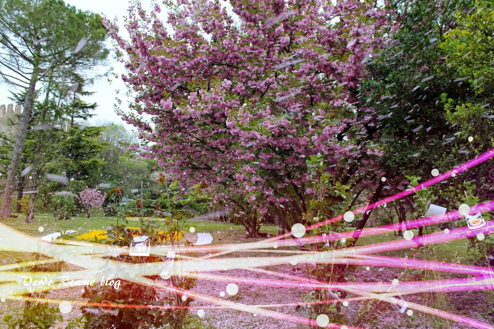 Verde reame este in fiore 2015 l 39 acqua nei giardini for Laghetti nei giardini