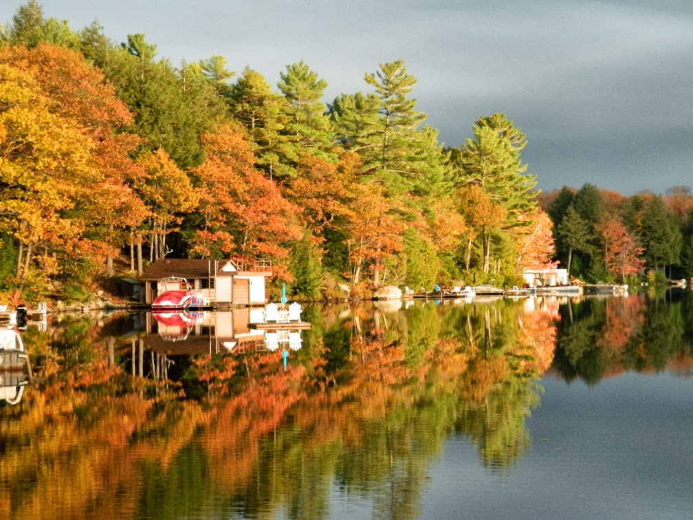 Lake Muskoka fall colours sunset by garden muses--a Toronto gardening blog