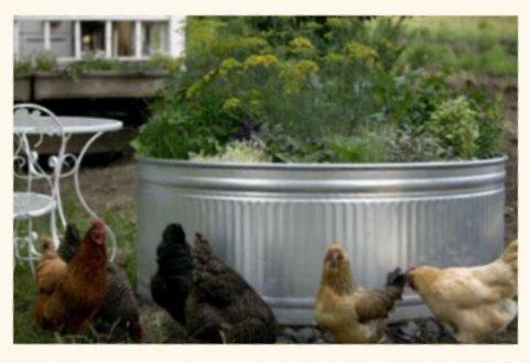 Horse Trough Garden And Bathtub/Shower