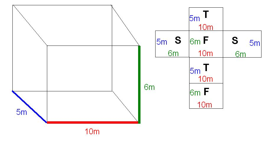 Rectangular Prism Net Rectangular prism