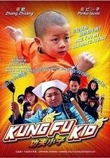 ver kung fu kid online