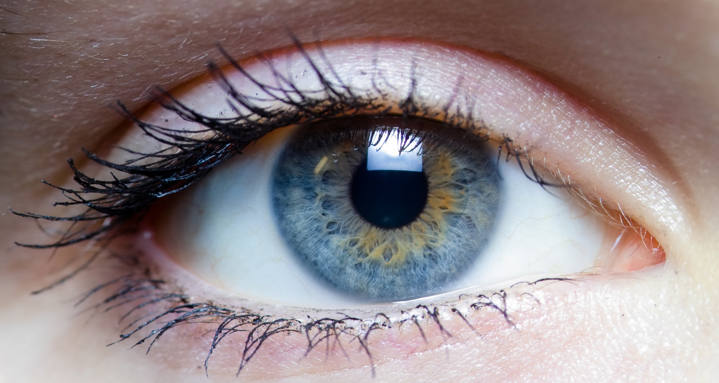 """Результат пошуку зображень за запитом """"eyesight"""""""