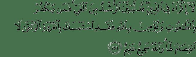 Surat Al-Baqarah Ayat 256