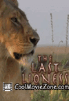 Last Lioness: National Geographic (2010)