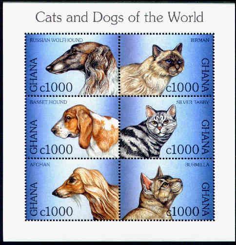 1997年ガーナ共和国 ボルゾイ バセット・ハウンド アフガン・ハウンドと猫の切手シート