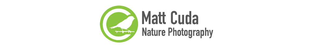 Matt Cuda Nature Photography Blog