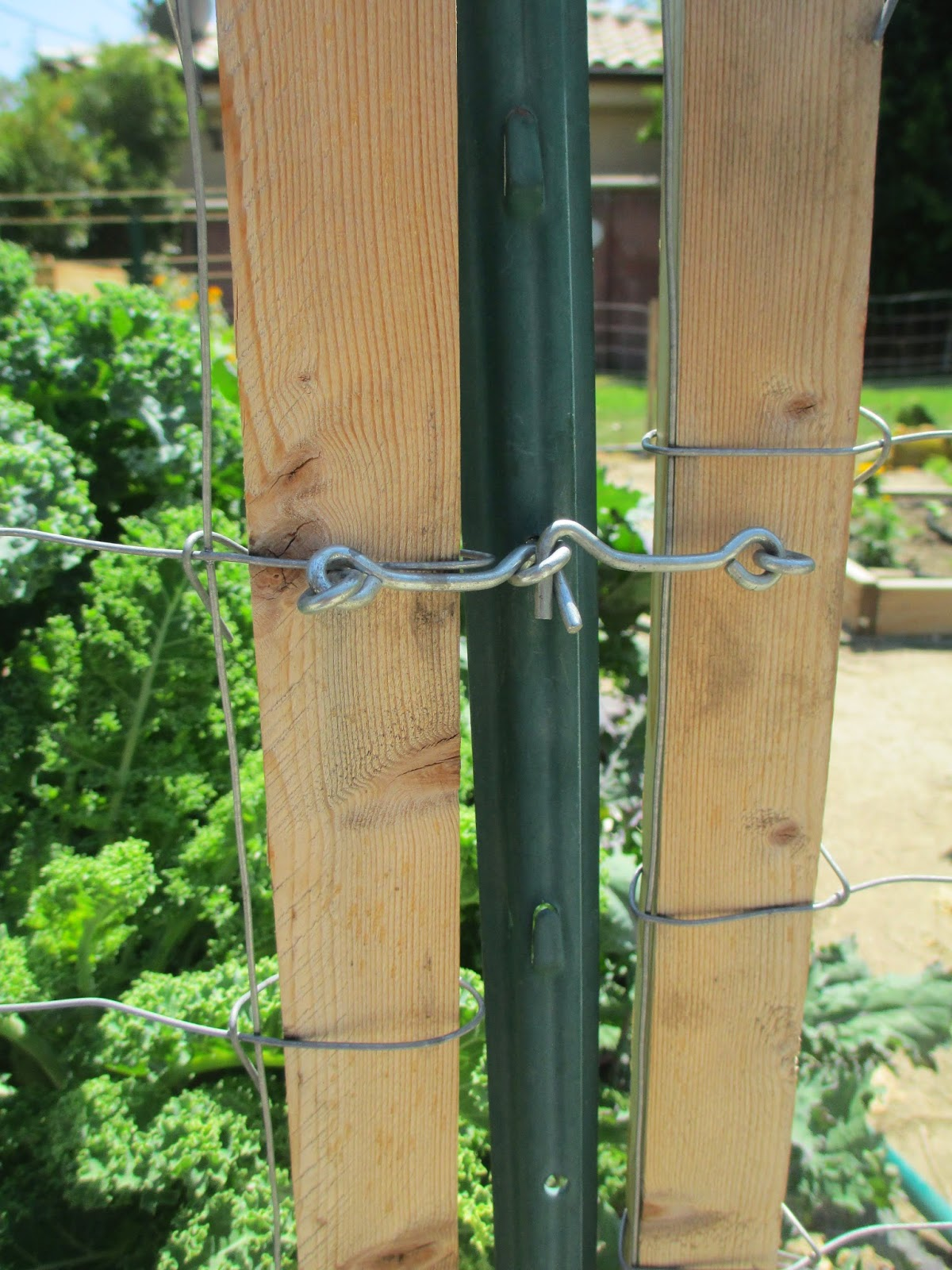 Andie S Way Fence And Simple Gates Removes Easily For