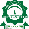 Tutoría virtual