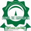Tutoría virtual