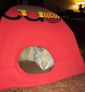 Bikin TENDA MINI utk  Kucing/Hewan Piaraan dari KAOS Bekas