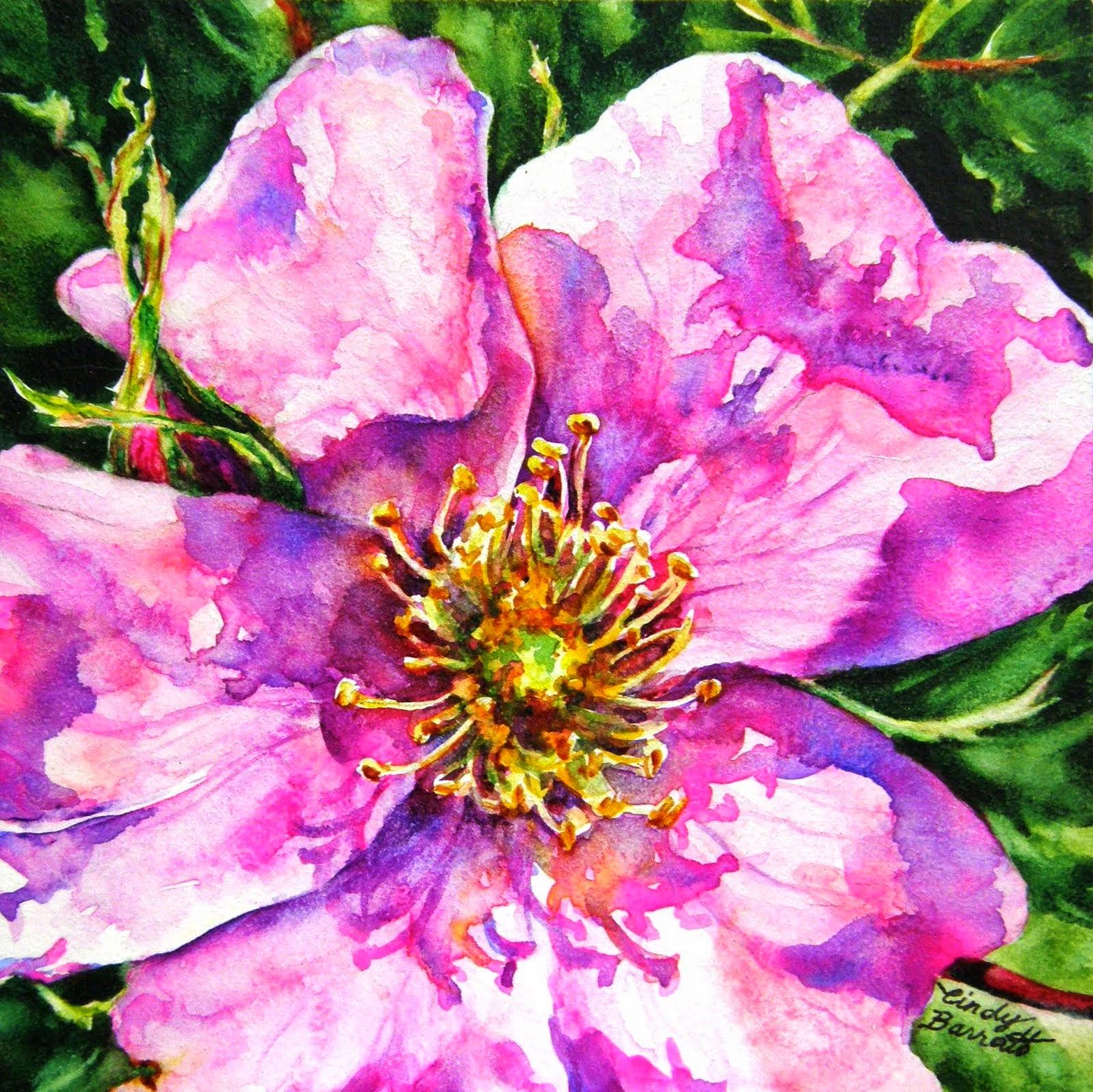 Alberta Rose #7
