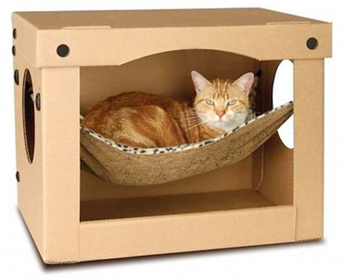 Like humans, cats also prefer a nice and comfortable place to sleep, and  these thirty creative and unusual homes allow them to do just that.