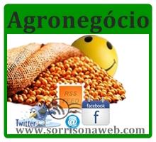 colheita de soja em sorriso 2013 - sorriso na web
