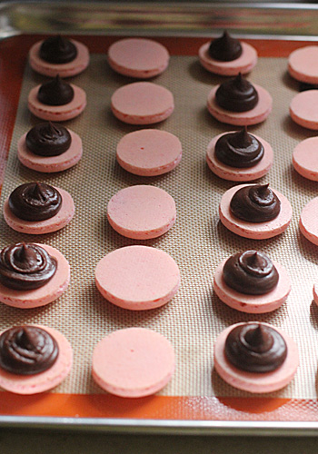 The Galley Gourmet Raspberry Chocolate French Macarons