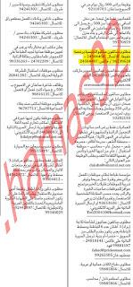 وظائف جريدة الشبيبة الاحد 2242012